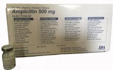 Ampicillin 500g